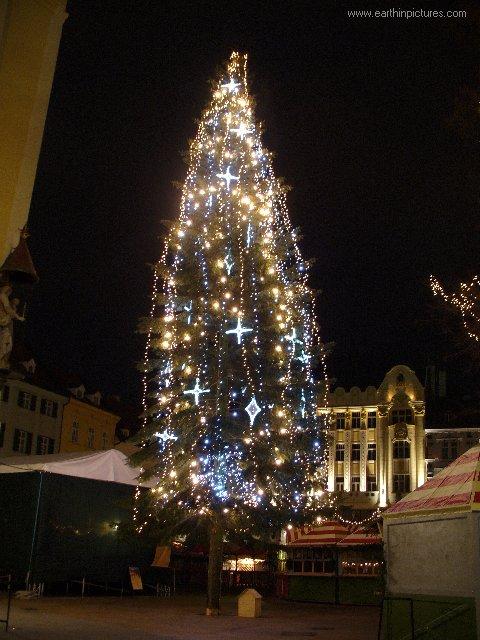 سلوفاكيا ........مدينه Bratislava christmas_tree_2006_at_main_square_at_night.jpg